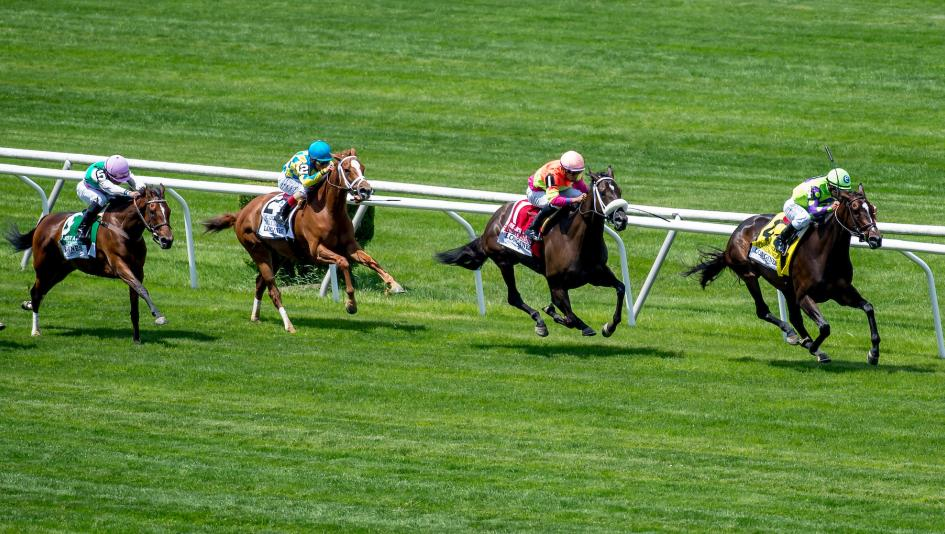 How to Master Horse Betting - Three Things to Master the Game and Be a Winner